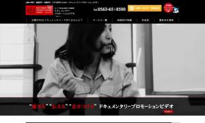 株式会社モーション・ビジュアル・ジャパン