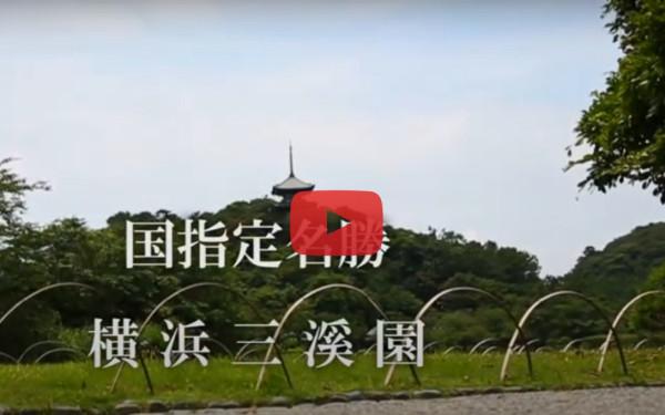 国指定名勝 横浜三渓園